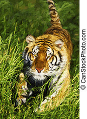 Fine art print of Bengal Tiger charging through grass -...