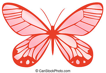 butterfly - drawing of red butterfly in a white background