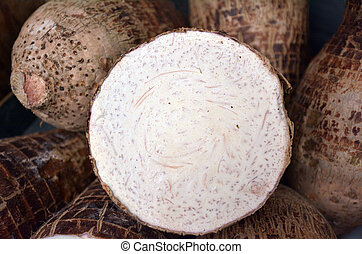 A cross section of cassava - A cross section of Taro Root at...