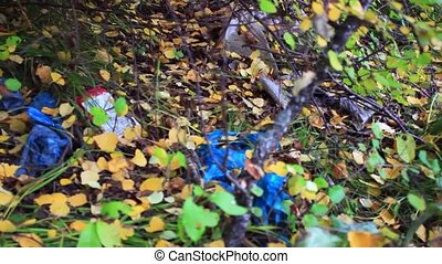 garbage in the forest in autumn. environmental pollution -...