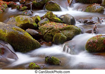 Pyrenees - silky stream in a forest in autumn in Aspe...