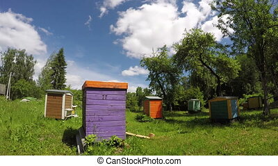 colorful wooden beehives in summer farm garden and clouds...
