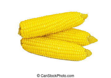 ear of corn - Three ear of corn on a white background
