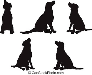 dog silhouette - Vector Image - dog silhouette in default...