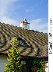 Big stork on the house roof