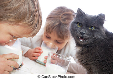 children and cat drinking milk - two children playing with a...