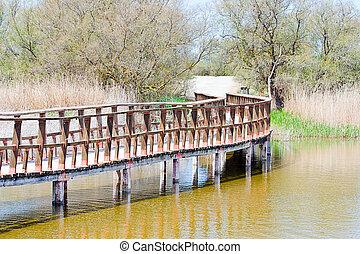 Tablas de Daimiel - wooden bridge in Tablas de Daimiel in...