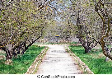 Tablas de Daimiel in Spain, natural park