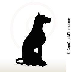 postura, silueta, perro, Sentado