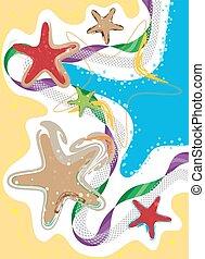 Coastline, Seaside and Starfish, co