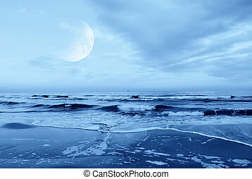 beach in the night - moon in the sky over the sea