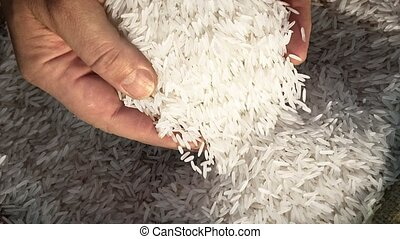 Unprocessed rice being poured from a mans hands slow motion...