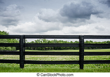 Horse Farm Fence - Black painted fence along a horse pasture...