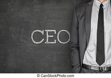CEO on blackboard with businessman on side