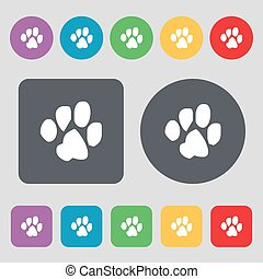 trace dogs icon sign. A set of 12 colored buttons. Flat design. Vector