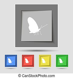 butterfly icon sign on original five colored buttons. Vector