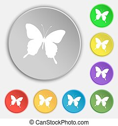 butterfly icon sign. Symbol on five flat buttons. Vector