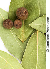 bay leaves and black pepper closeup on white background.