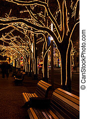 Berlin Under The Linden Trees christmas 07