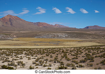 Altiplano Landscape - Large open plain high up in the...