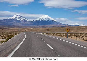 Road on the Altiplano - Road running towards the snow and...