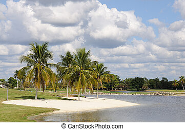 Palm Trees and Lake in Naples, Florida USA