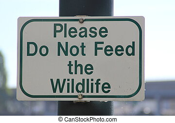 """""""Please Do Not Feed the Wildlife"""""""