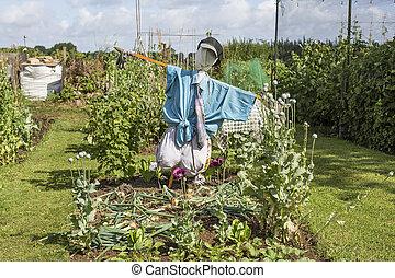 Scarecrow Guarding Allotment Plot Vegetables
