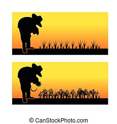 Silhouette of an asian woman planting rice seedlings and harvest in a paddy field 001