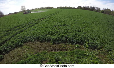 Tractor spray fertilize rapeseed field with insecticide...