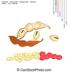 Soybean with Vitamin B9, B1, B2 and K - Healthcare Concept,...