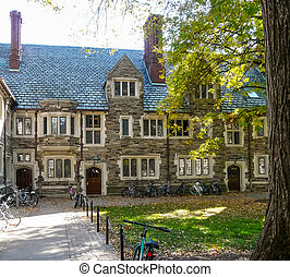 Bicycles in campus at Princeton University - Autumn in one...