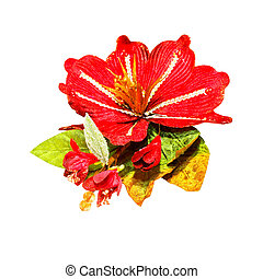 Christmas flower - Red Christmas flower isolated included...
