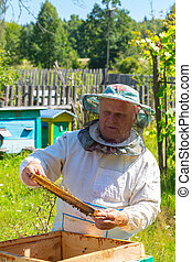 Working apiarist and frame with bees. - Beekeeper working in...