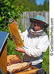 Working apiarist in a spring season. - A beekeeper checks on...