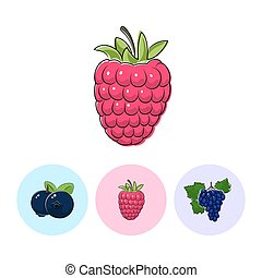 Fruit Icons, Raspberries ,Blueberries, Grapes - Berry...