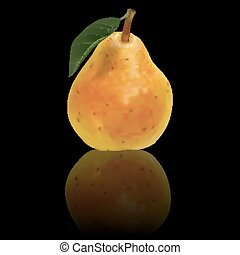 vector pear isolated on black background