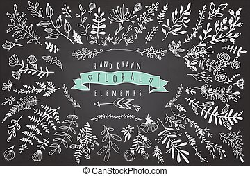 Big collection of different hand drawn floral elements on...