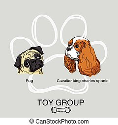 dog toy group pack1