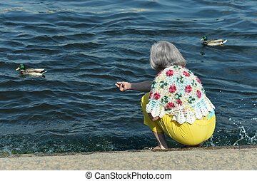 Senior woman in  park with ducks