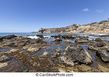 Southern California Tidal Pools