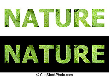 Textured Word Nature