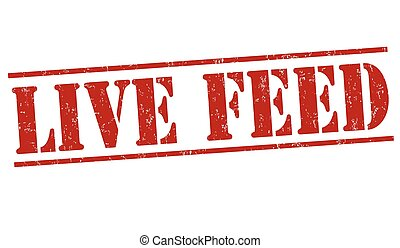 Live feed stamp