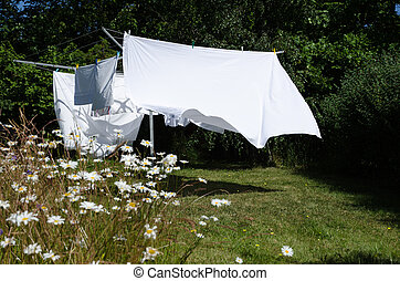 Drying white sheets - Newly washed white sheets drying at a...