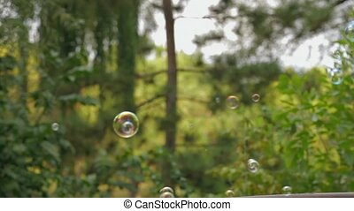 Soap Bubbles In A Park - Soap bubbles flying all around...