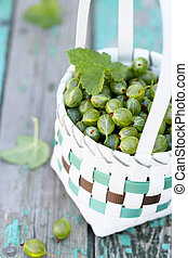 gooseberries - Ripe gooseberries in a white wicker basket