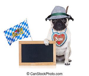bavarian german pug dog - pug dog dressed up as bavarian...