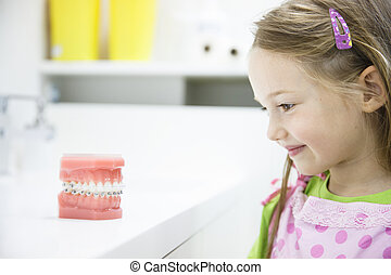 Little girl observing model of human jaw with braces -...