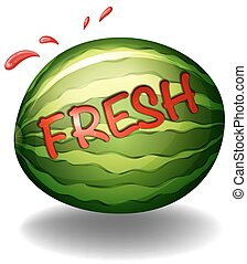 """Water melon - Flashcard of a water melon with a text """"fresh""""..."""