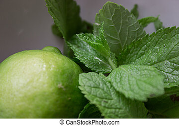 Closeup fresh lime with mint